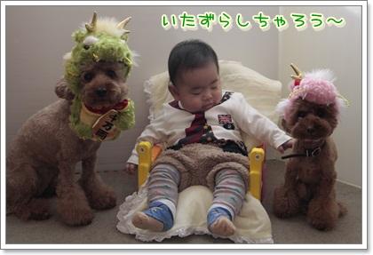 4_20111205222027.jpg