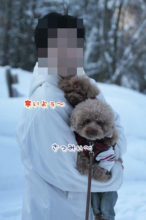4_20120322122257.jpg