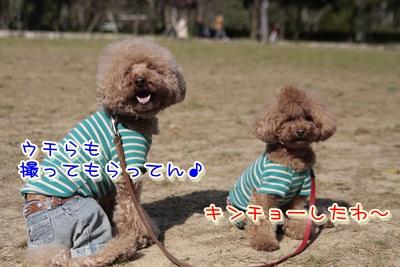 4_20120405130238.jpg