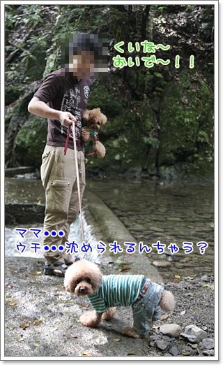 5_20110610104219.jpg
