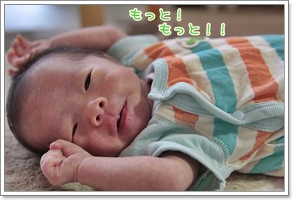 5_20110806121720.jpg