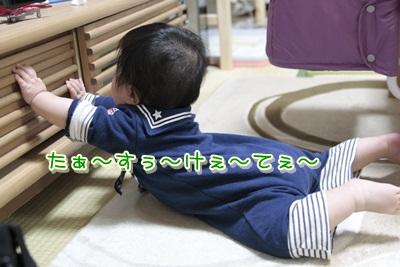5_20120416145753.jpg