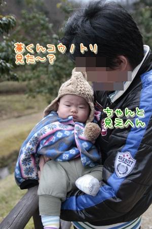 6_20111211145703.jpg