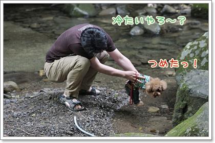 7_20110610105913.jpg