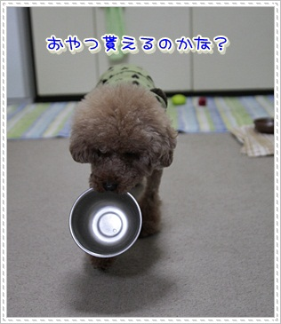 7_20111128201227.jpg