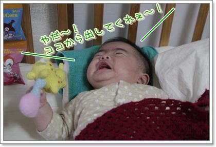 7_20111202130546.jpg