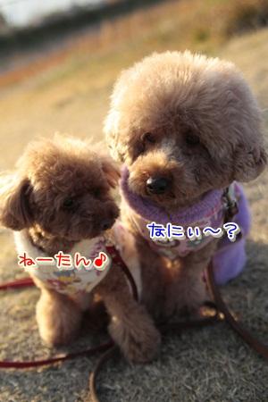9_20111231211944.jpg