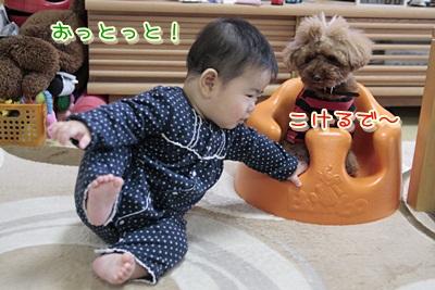 d_20120303154356.jpg