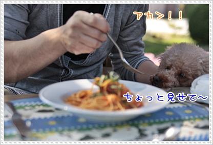 f_20110930203433.jpg