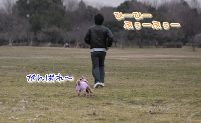 h_20120311130719.jpg