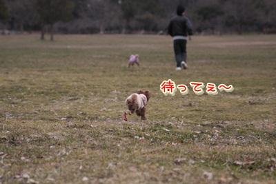 i_20120311130719.jpg