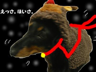 20071231155254.jpg