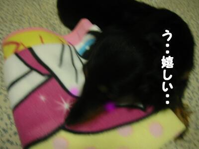 20080101135102.jpg