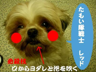 20080121183510.jpg