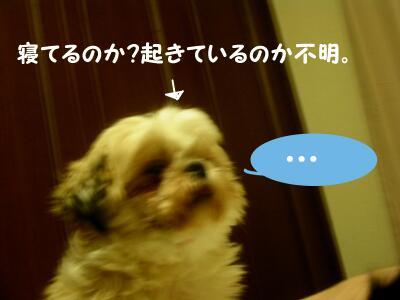 20080123025113.jpg