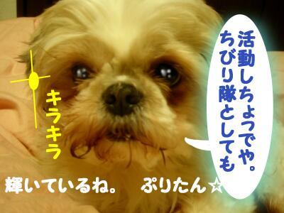 20080124011718.jpg