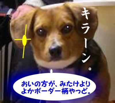 san-kaisatuma-1s-46.jpg