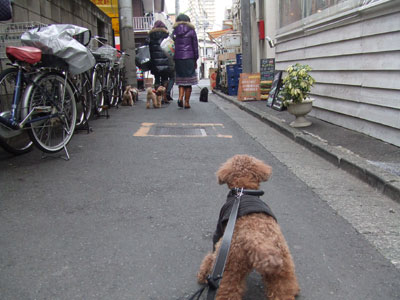 駒沢 SMILE(スマイル) への道