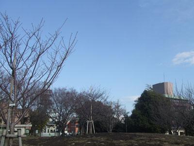 冬の西郷山公園