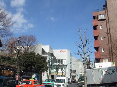 いい天気~