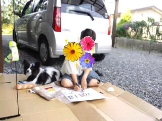 看板作り再び☆2011