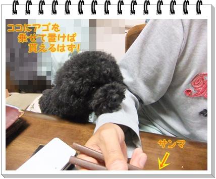 002_20111015173607.jpg