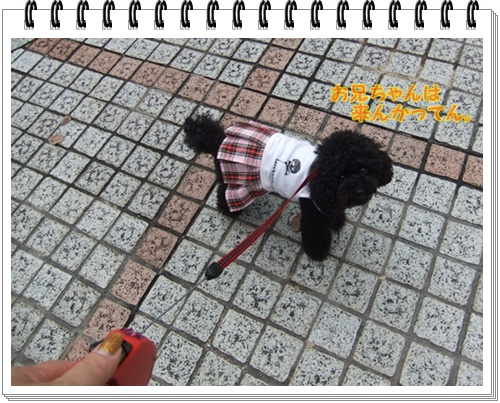006_20111020115257.jpg