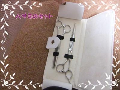 006_20120216120340.jpg
