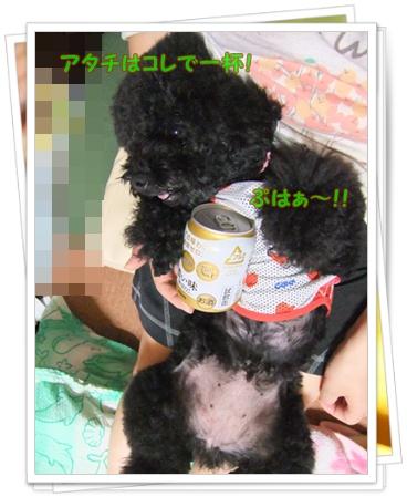 016_20110706194003.jpg