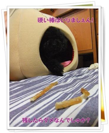022_20110702232536.jpg