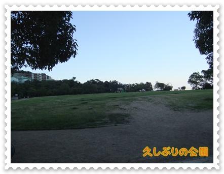 031_20110715131956.jpg