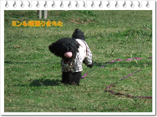 034_20111020115256.jpg