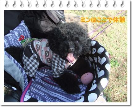 045_20111020115256.jpg