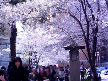 2304_hananomichi1.jpg