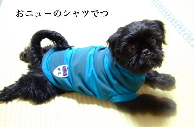20080124_01.jpg