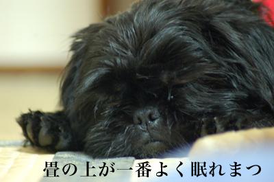 200801_17.jpg