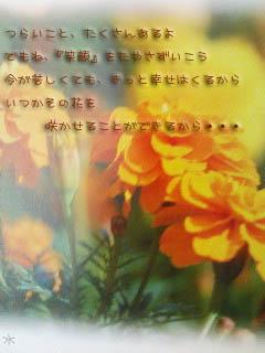 20070510195031.jpg