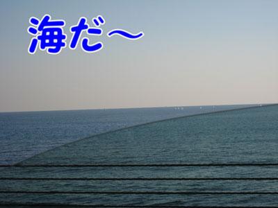IMG_2367a.jpg
