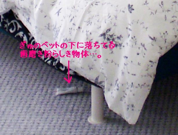 kyu-room6