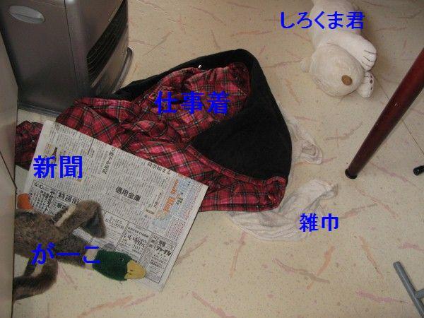 IMG_0034 (600x450)
