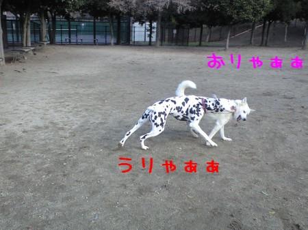 CA390089.jpg