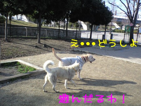 CA390093.jpg