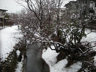 tamagawajousui.jpg