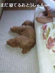 寝てるランス