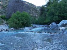 Angeles National forest May 31st (1)s-