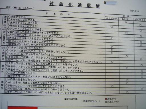 P1050738.jpg