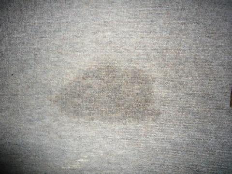 P1060616.jpg