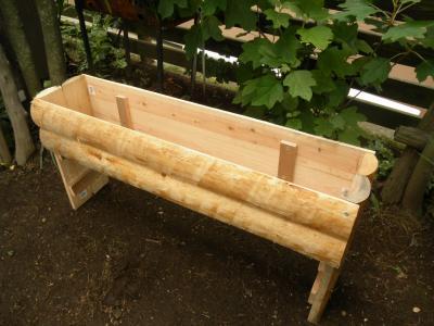 2011.6.13  ヒノキの植木鉢