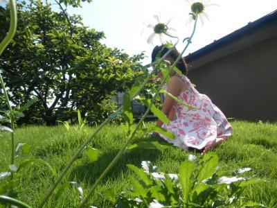 2011.6.28  草屋根のKatya