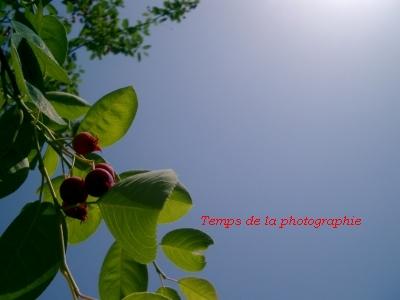 20070527001404.jpg